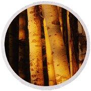 Sunlight On Aspen Trees, Twin Falls Round Beach Towel