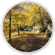 Sunny Day In The Autumn Park Round Beach Towel