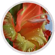Sunny Glads Round Beach Towel by Susan Herber