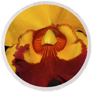 Sunny Yellow Orchid Round Beach Towel