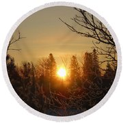 Sunrise In The Trees Round Beach Towel
