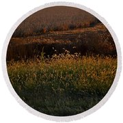 Sunrise On Wild Grasses II Round Beach Towel