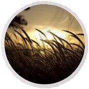 Sunset Behind Tall Grass Round Beach Towel