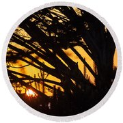 Sunset In The Trees Round Beach Towel
