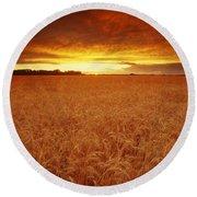 Sunset Over Wheat Field Round Beach Towel