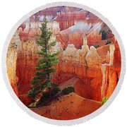 Sunset Point Trees Round Beach Towel