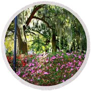 Sunshine Through Savannah Park Trees Round Beach Towel