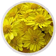 Sunshine Yellow Chrysanthemums Round Beach Towel