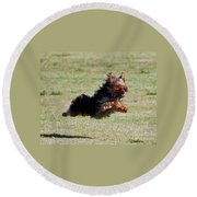 Super Yorkie Round Beach Towel
