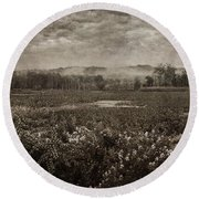 Suspended Over The Wetlands Round Beach Towel