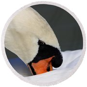 Swan - Soft And Fluffy Round Beach Towel