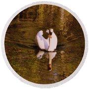 Swan At Susan Lake Round Beach Towel