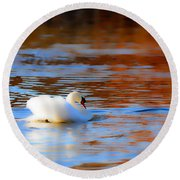 Swan Gold And Blue Round Beach Towel