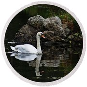Swan I Round Beach Towel