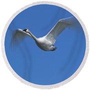 Swan In Flight, Long Exposure Round Beach Towel
