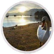 Swan On The Beach Round Beach Towel