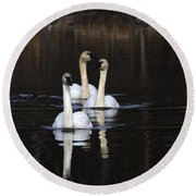 Swans In A Row Round Beach Towel