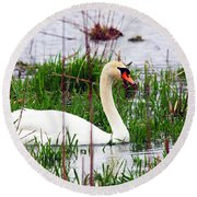 Swan's Marsh Round Beach Towel