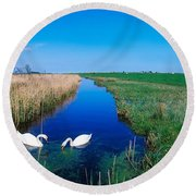 Swans On Bog, Near Newcastle, Co Round Beach Towel