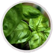 Sweet Basil From The Garden Round Beach Towel