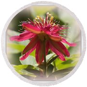 Sweet Dreams Passion Flower Round Beach Towel