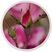 Sweet Little Rosebud Round Beach Towel