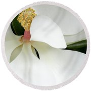 Sweet Magnolia Flower Round Beach Towel