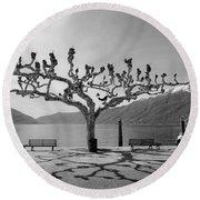 sycamore trees in Ascona - Ticino Round Beach Towel by Joana Kruse
