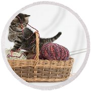 Tabby Kitten Playing With Knitting Wool Round Beach Towel