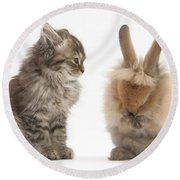 Tabby Kitten With Young Rabbit, Grooming Round Beach Towel