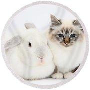 Tabby-point Birman Cat And White Rabbit Round Beach Towel