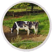 Tail Of Two Cows Round Beach Towel