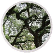 Tampa Trees Round Beach Towel