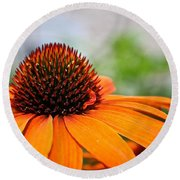 Tangerine Summer Round Beach Towel