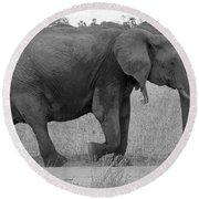 Tarangire Elephant On Road Round Beach Towel