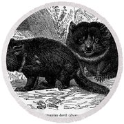 Tasmanian Devil Round Beach Towel