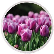 Taylor's Tulips Round Beach Towel