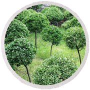 Temple Garden Trees Round Beach Towel