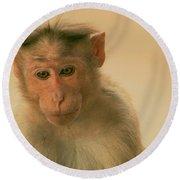 Temple Monkey Round Beach Towel