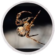 Tending The Web Invisible Round Beach Towel