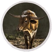 Texas Longhorn # 4 Round Beach Towel
