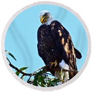 That Eagle Stare Round Beach Towel