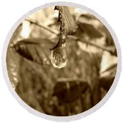 Thawing Sepia Leaves Round Beach Towel