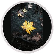 The Autumn Leaf Round Beach Towel