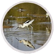 The Avocets  Round Beach Towel