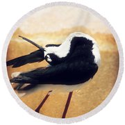 The Ballerina Bird Round Beach Towel