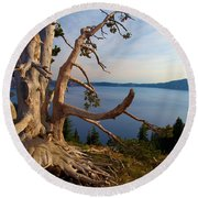 The Banks Of Crater Lake Round Beach Towel