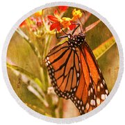 The Beauty Of A Butterfly Round Beach Towel