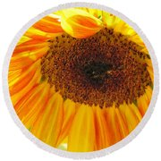 The Beauty Of A Sunflower Round Beach Towel