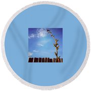 The Blueberry Bush  Round Beach Towel by Katie Cupcakes